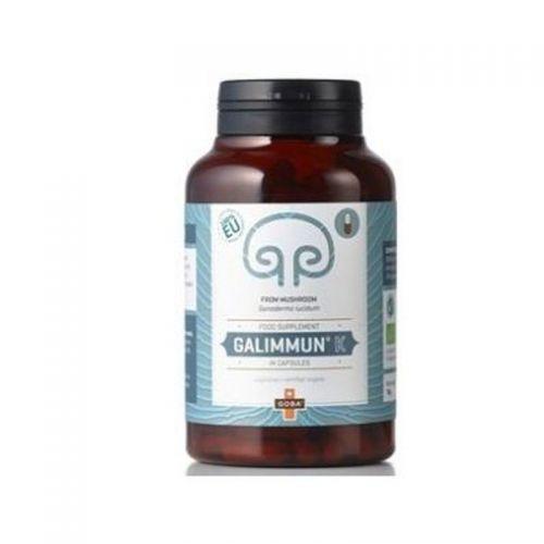 Galimmun® K 70g (goba Reishi)